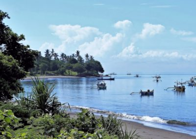 Indonésie – De la jungle aux sables de Bali