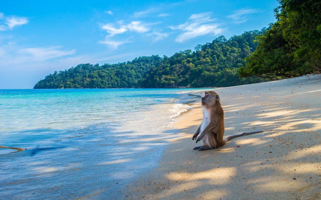 Thailande – Séjour à l'hôtel Coral Bang Saphan