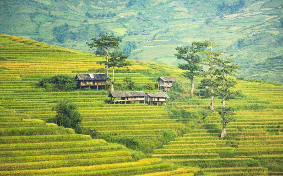 Indonésie – Merveilles de Bali