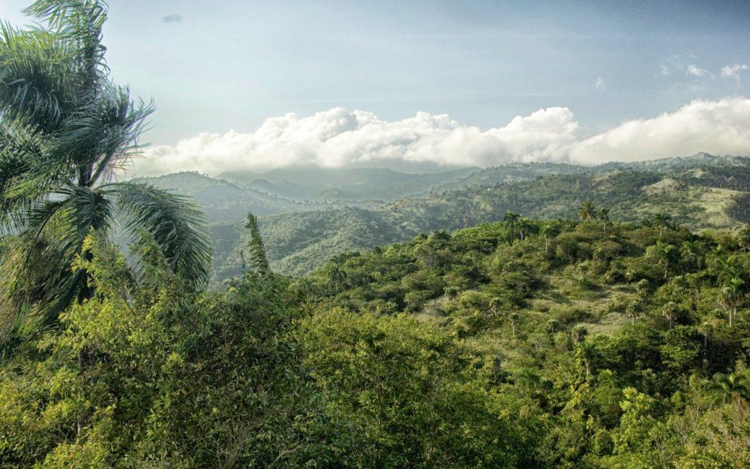 République Dominicaine – Séjour à l'hôtel Barcelo Bavaro Palace
