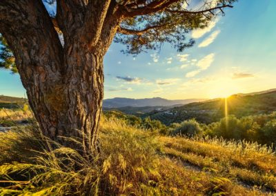 Espagne – Sur la route en Andalousie