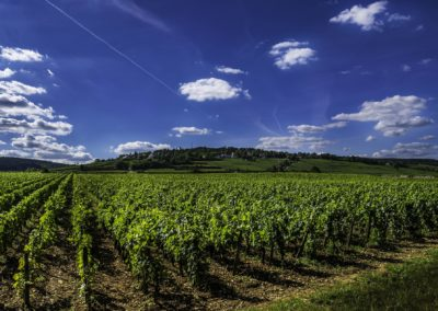 France – La bourgogne à vélo