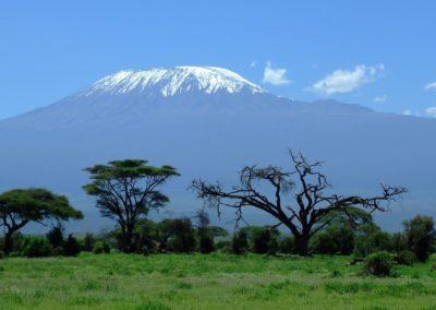 Tanzanie – Terres sauvages et plages paradisiaques